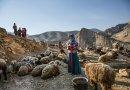 Eye-catching Nomadic village