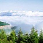 Abr jungle (Cloud jungle)