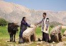 Stunning Bakhtiari villages
