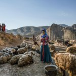 Eye-catching Nomadic village